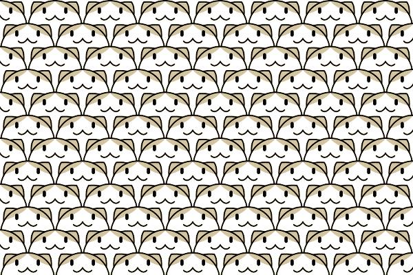 猫海波のイラスト